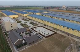 豫粮种业金粒种业12万吨